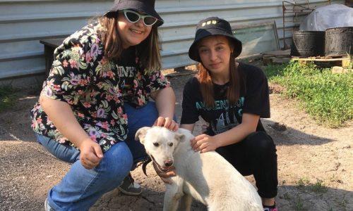 Посещение Благотворительного фонда помощи животным «УМКА»